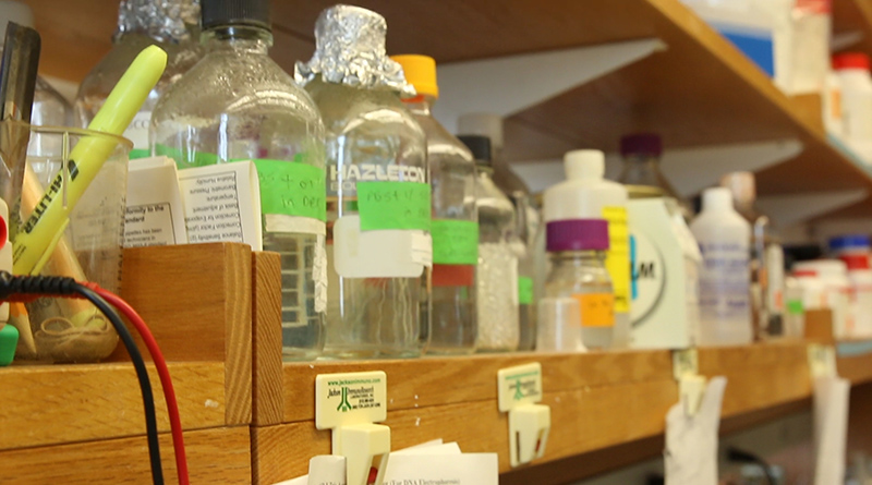 Bottles line the shelves at the lab of Dr. Eric Marsh, assistant professor of neurology and pediatrics and attending physician at the Children's Hospital of Philadelphia.  (Photo by Calah Kelley/News21)