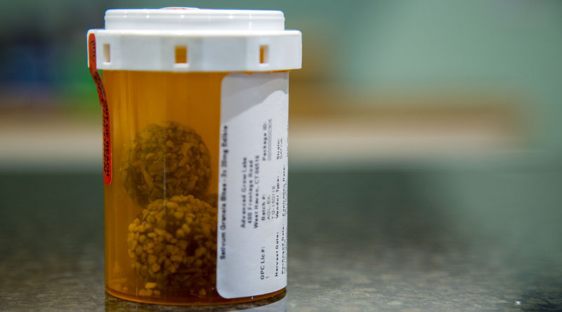 A dose of Gran Bites, an edible marijuana product, sits on the counter of Thames Alternative Relief dispensary in Uncasville, Connecticut. The medical marijuana program in Connecticut is run similarly to the pharmaceutical program, and patients receive marijuana in sealed pill bottles. (Photo by Jessie Wardarski/News21)